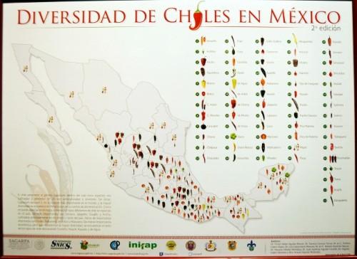 Variedad Chiles México (Small)