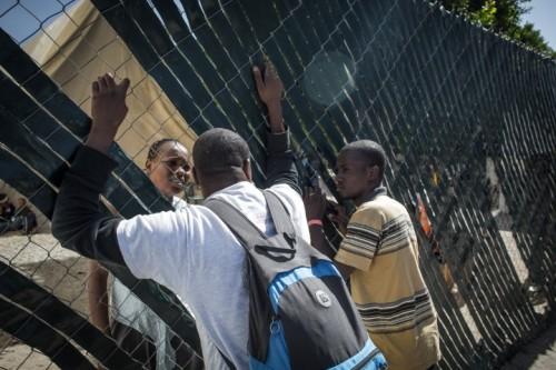 haitiani-tijuana-1