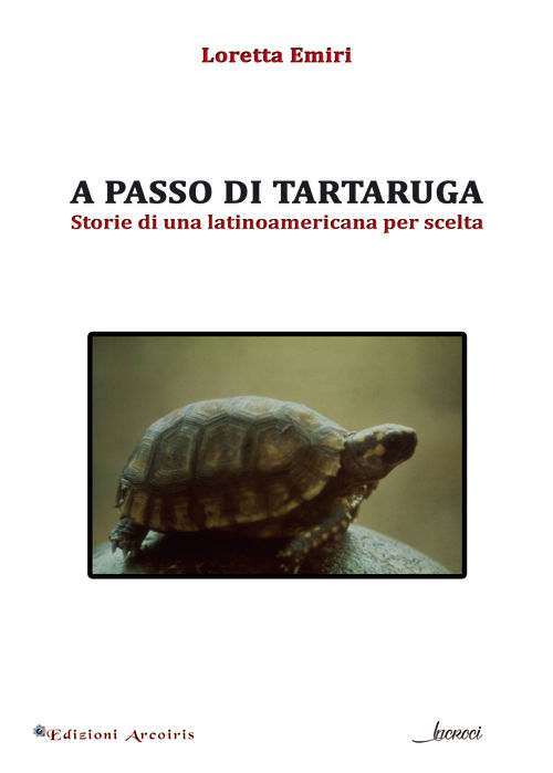 a passo di tartaruga