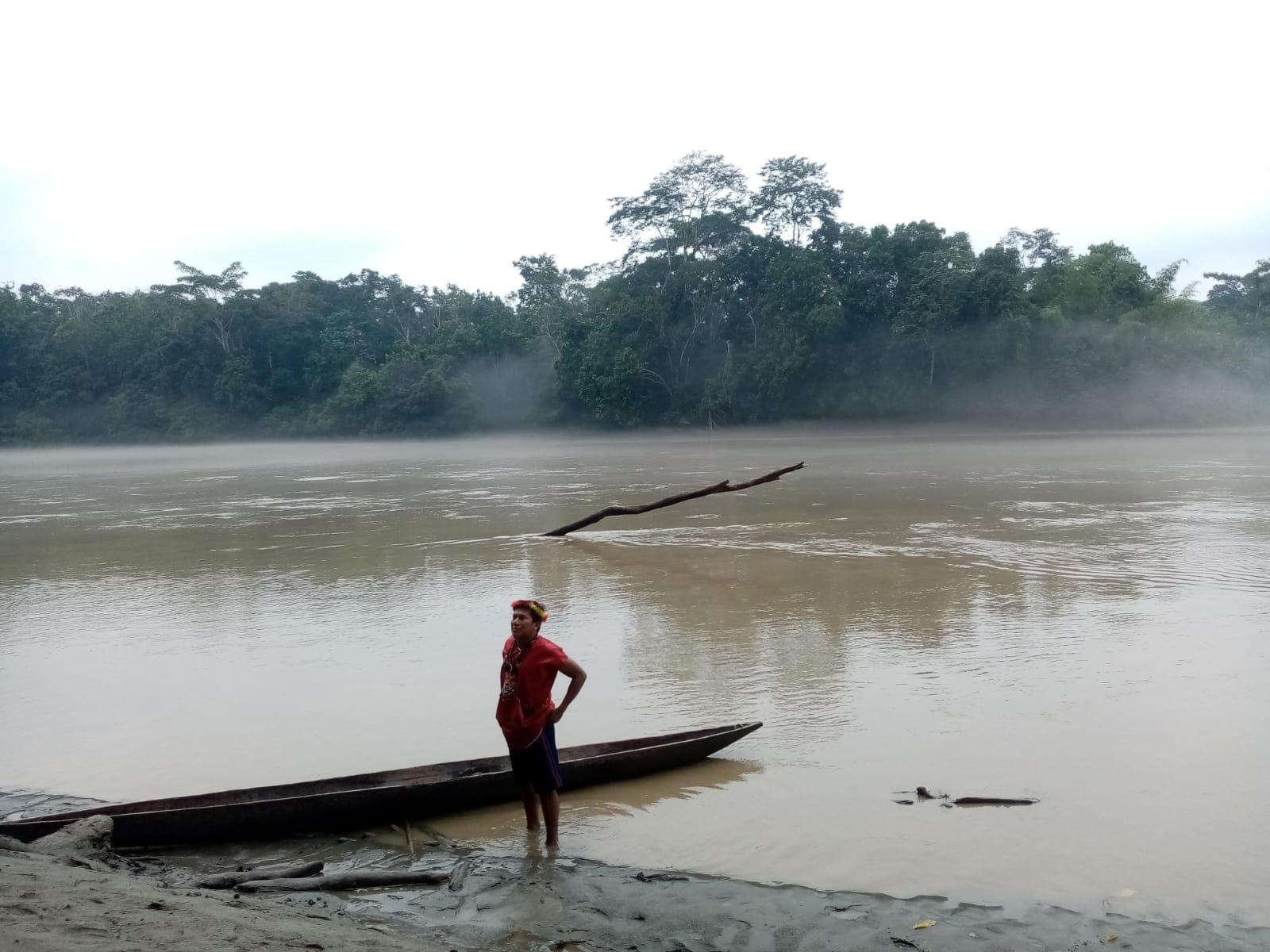 La imagen tiene un atributo ALT vacío; su nombre de archivo es annalisa-bosco-amazzonia-3.jpeg