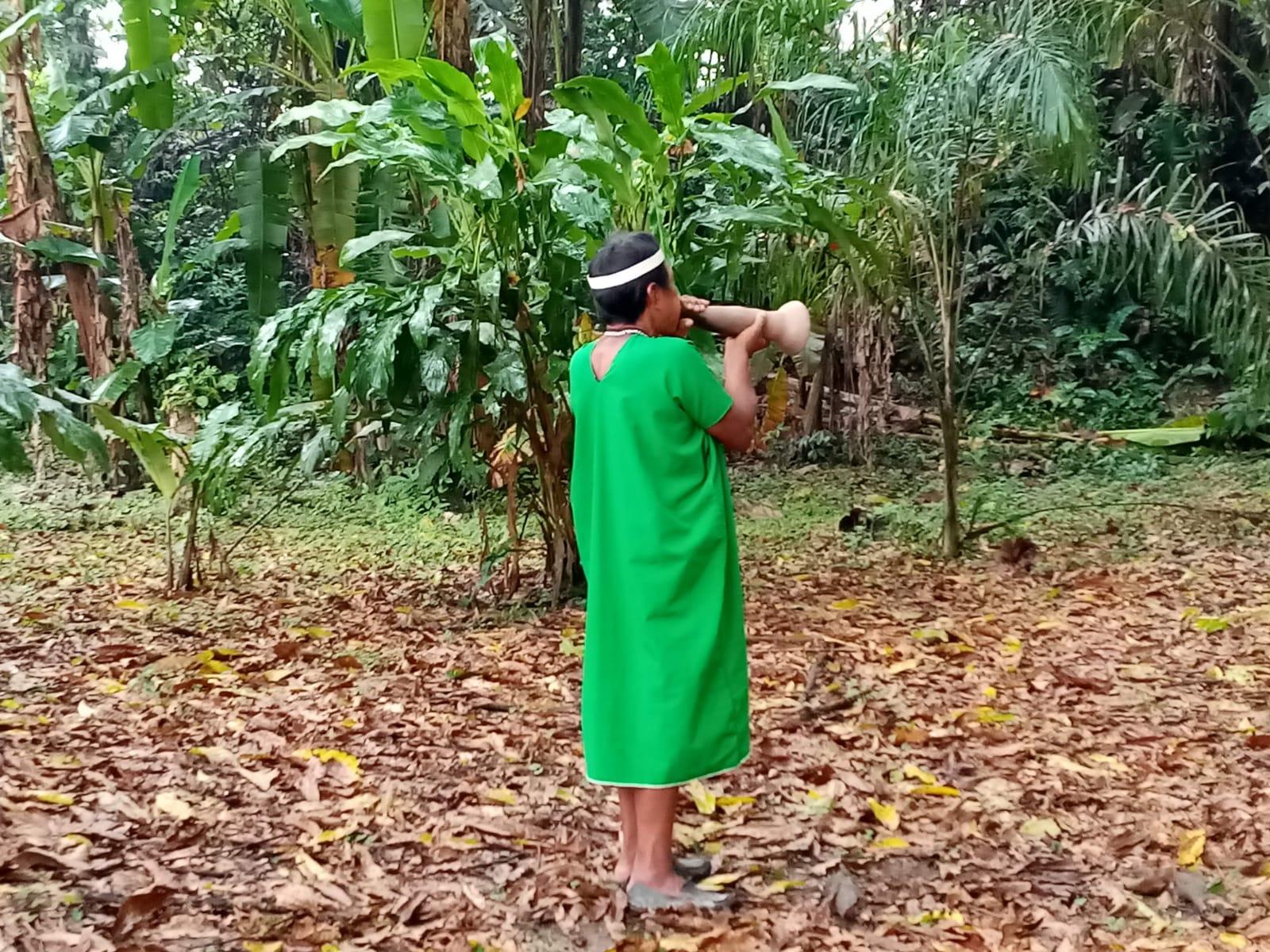 La imagen tiene un atributo ALT vacío; su nombre de archivo es annalisa-bosco-amazzonia-4.jpeg